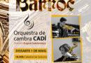 La Catedral acull demà un concert de taquilla inversa per finançar la restauració de l'orgue